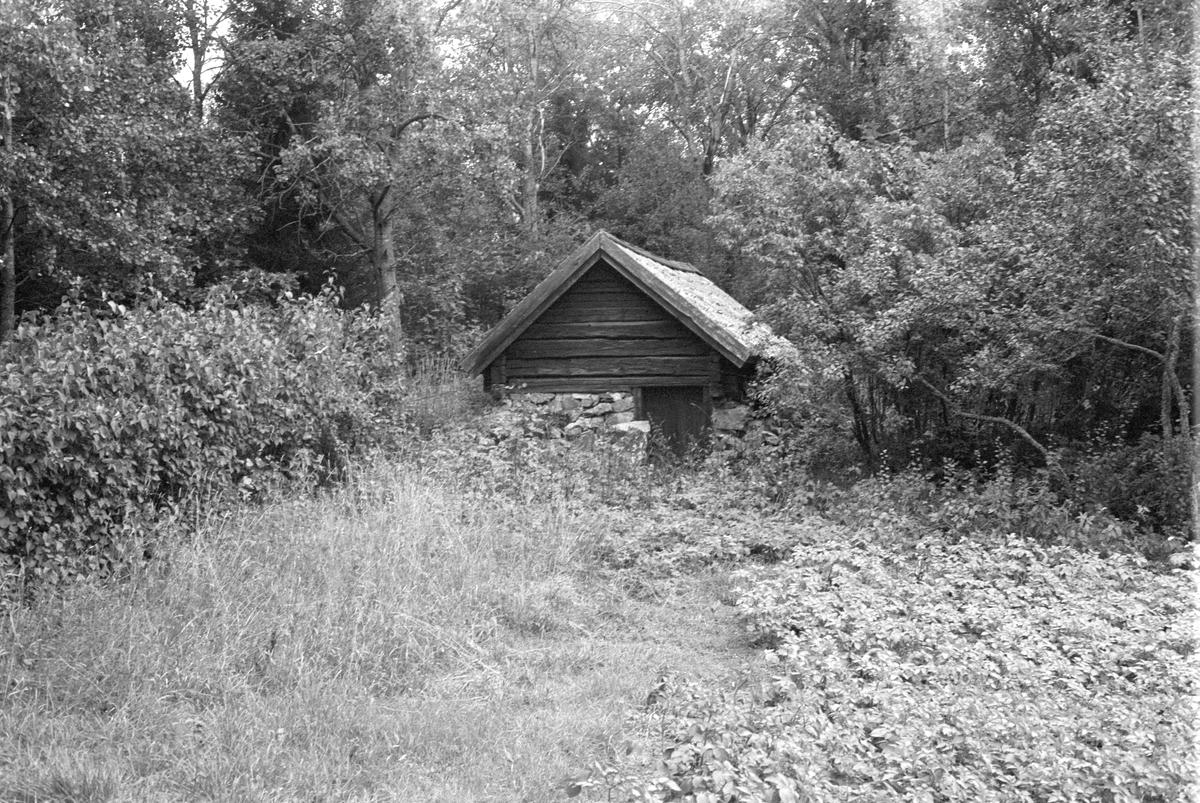 Källare, Stentorpet, Ycklinge 1:4, Rasbokils socken, Uppland 1982
