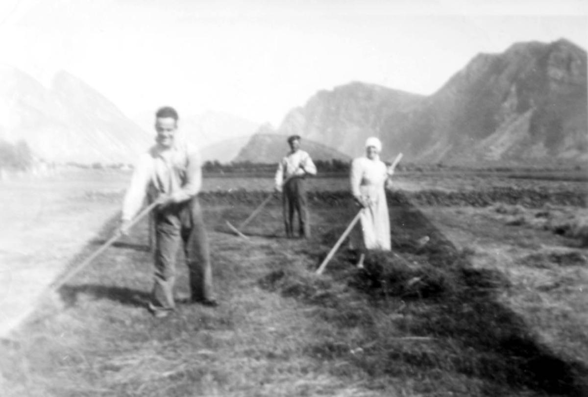 Jordbruk. Gruppebilde. 3 personer, 2 menn og 1 kvinne raker høy.