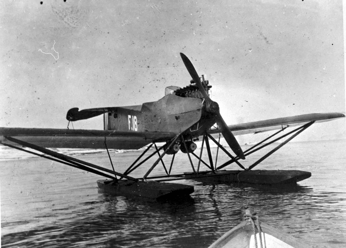 1 fly ligger stille på havet, Hansa Brandenburg W.33 F-18.
