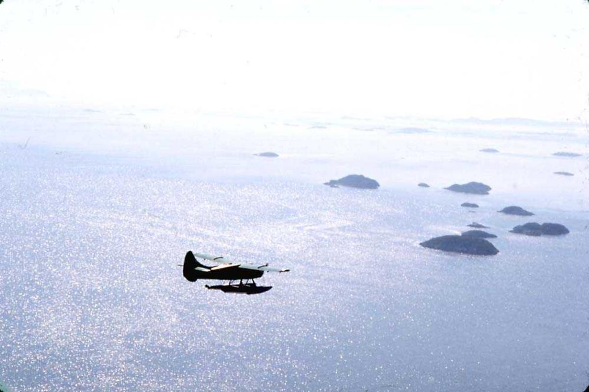 Luftfoto. Ett fly i luften. DHC-3 Otter på flotører, LN-BDD fra Widerøe.