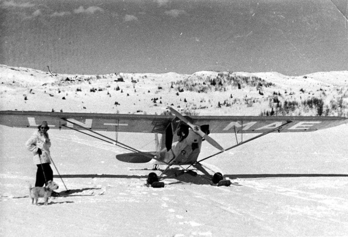 Ett fly med skiunderstell på en åpen plass. Piper J-3C-65 Cub LN-MAE. En person på ski med en hund, ved siden av flyet. Fjell i bakgrunnen. Snø på bakken.