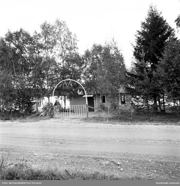 Ödetorp i Medelpad och Ångermanland. Fotat för ett reportage i tidningen Husmodern.