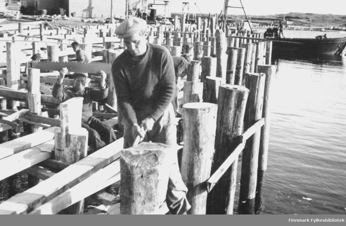 En mann arbeider med gjenoppbyggingen av kaiene i Vadsø etter at de ble ødelagt under andre verdenskrig. Bak ham sitter en mann som holder opp et langt sagblad, og smiler til fotografen. Bak ham igjen jobber tre menn på kaiene. Til høyre bak i bildet ligger en båt hvor det står en mann og arbeider. Helt i bakgrunnen av bildet ligger landskap og en bygning, samt flere reisverk til kaier