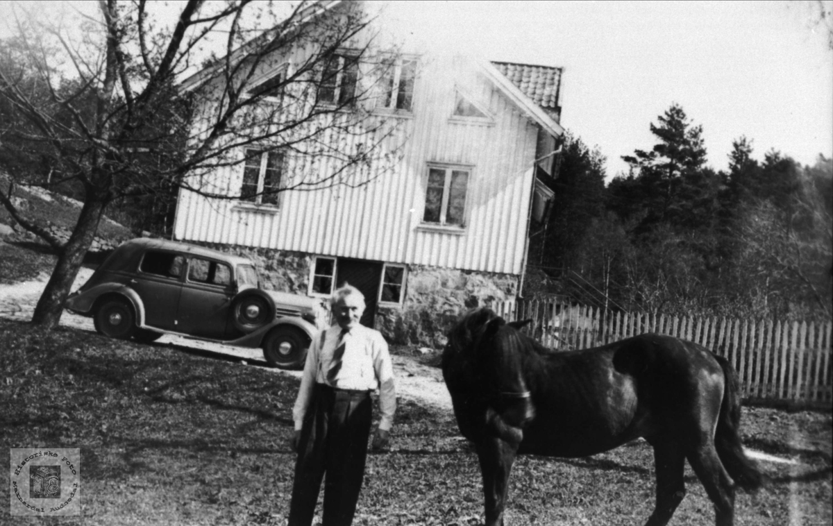 Askild Fidjestøl med hest