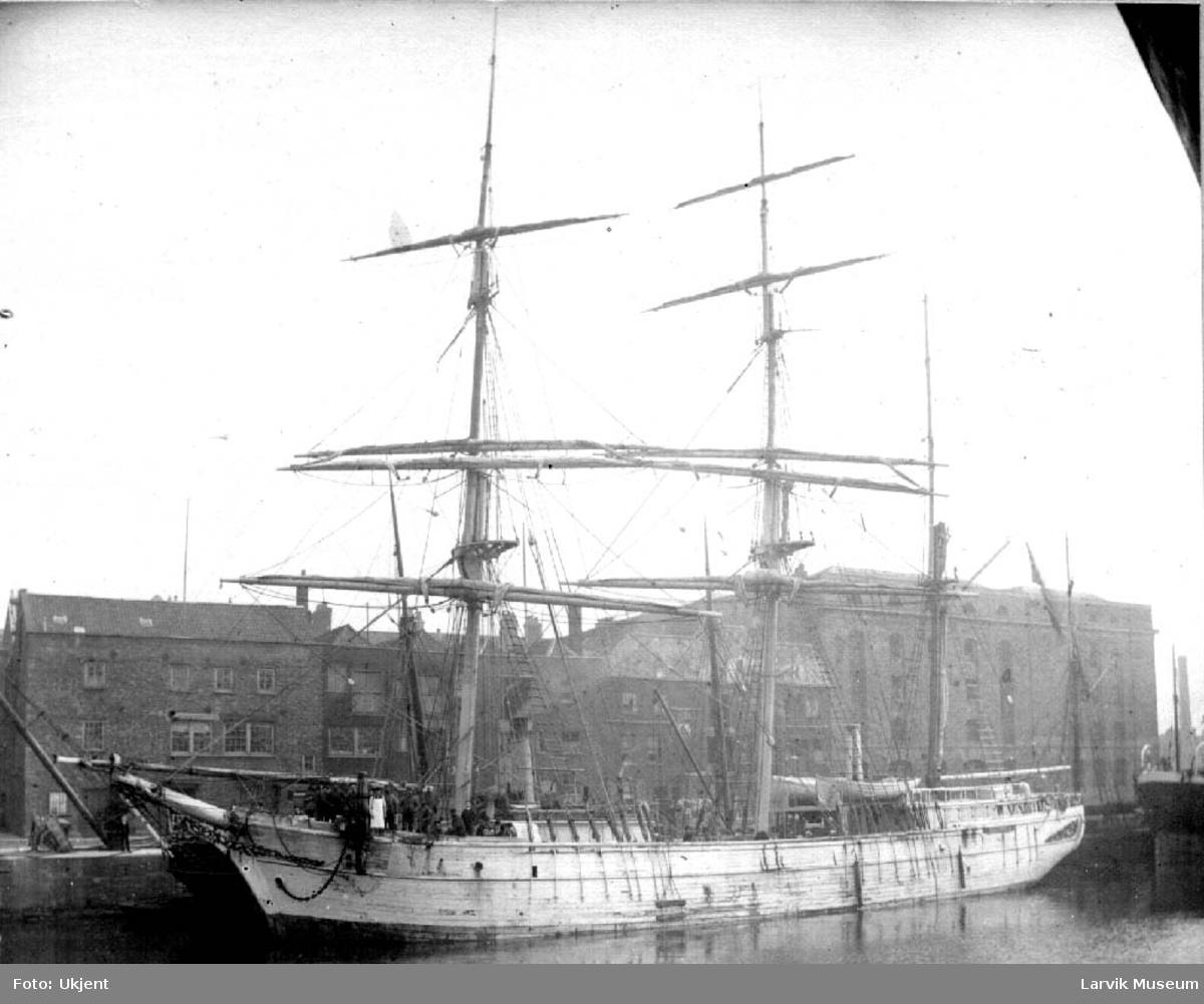 Adelphia av Larvik