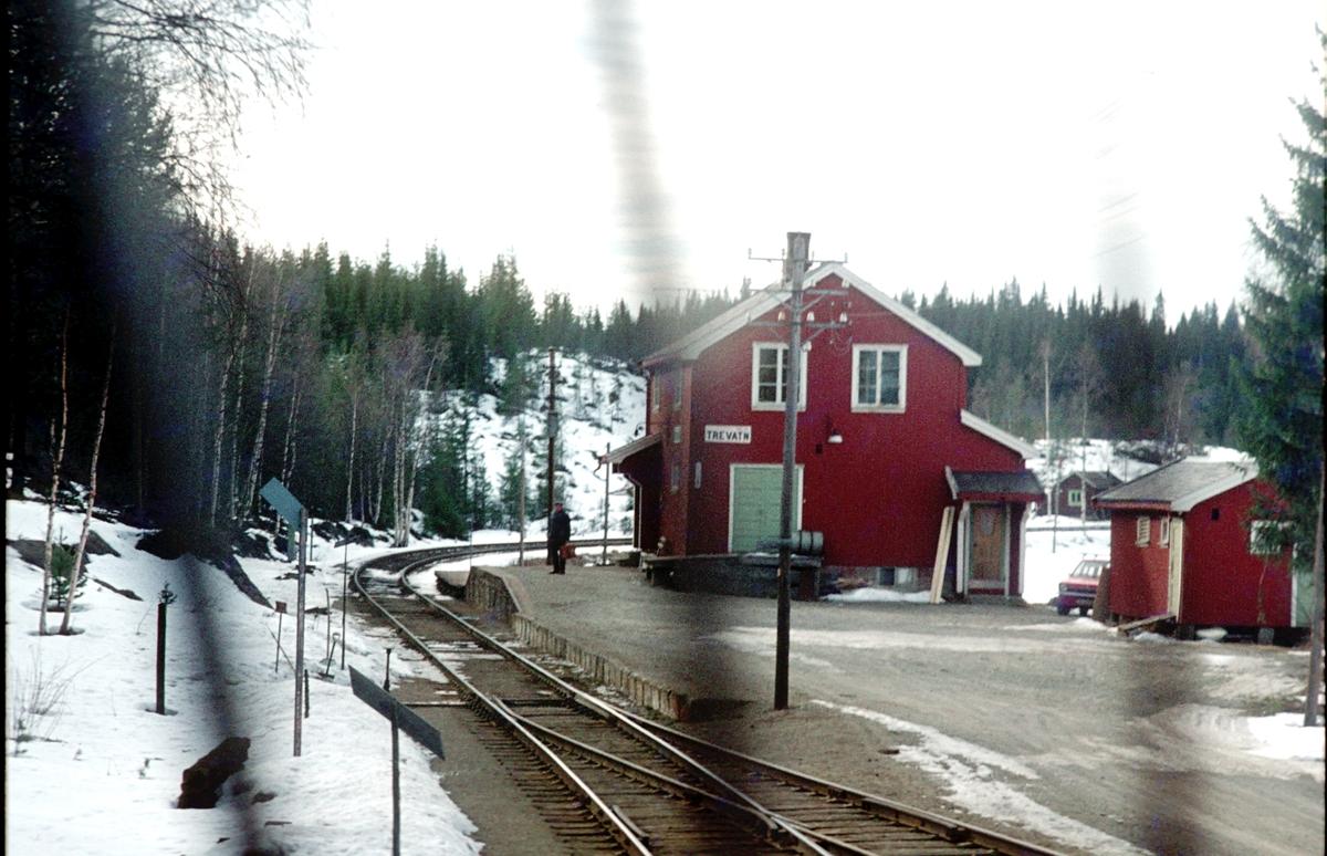 Tog til Fagernes kjører inn på Trevatn holdeplass.