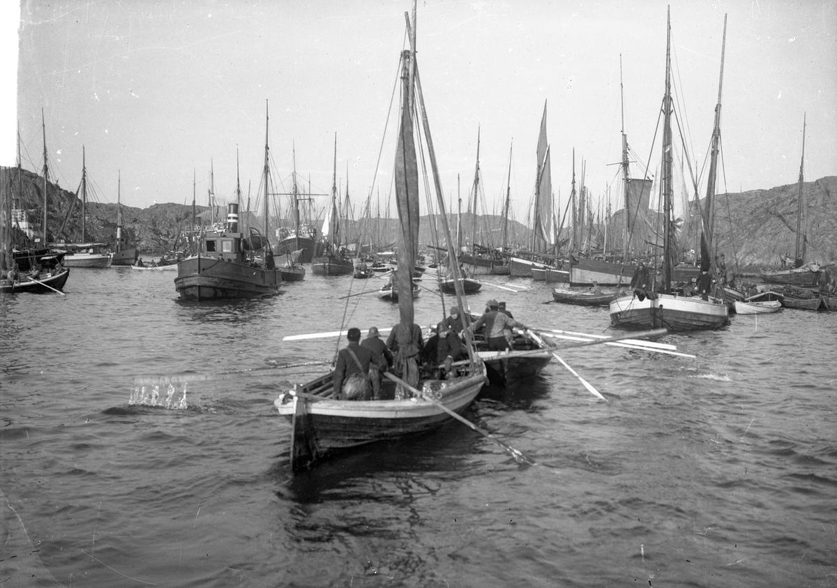 Vårsildfisket. Mange mindre fiskebåter, færinger og minst et dampskip i bakgrunnen. Mannskapet er synlig i fiskebåtene i forgrunnen.