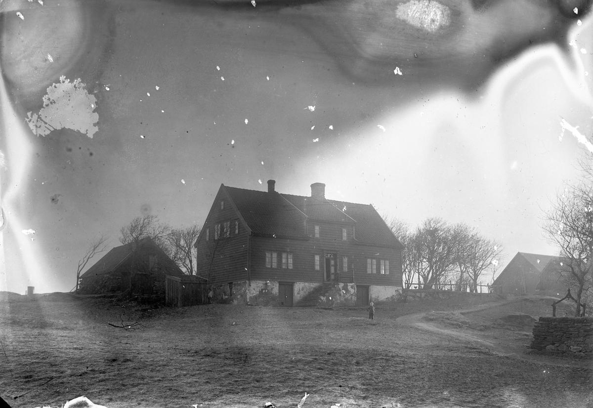 Jens Thormansens gård på Risøy. En liten gutt midt på bildet på gårdstunet. Noen trær til venstre for våningshuset (midt på bildet).