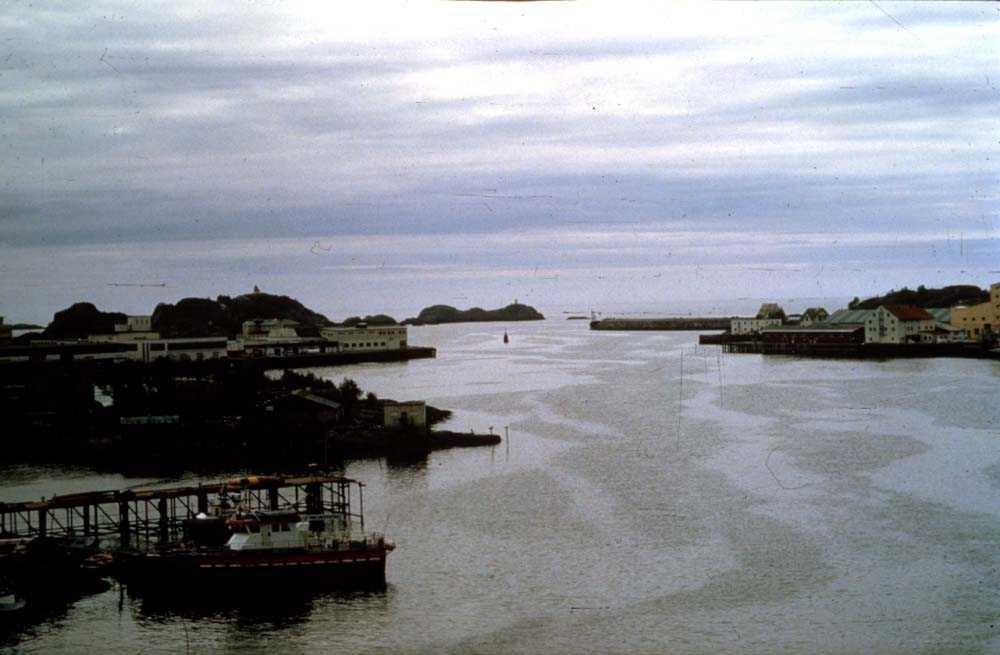 Landskap. Innløpet til Svolvær havn en sommerdag.