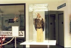 Fra resepsjonen på Norsk Luftfartsmuseum, monter med Havørn,