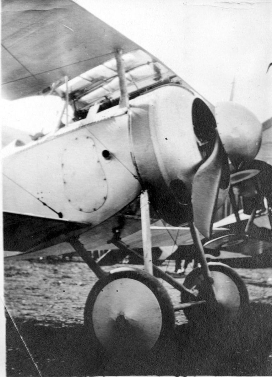 Fly, Nieuport 17C.1 (11C.1). Skrått forfra, forpartiet. Står på bakken.