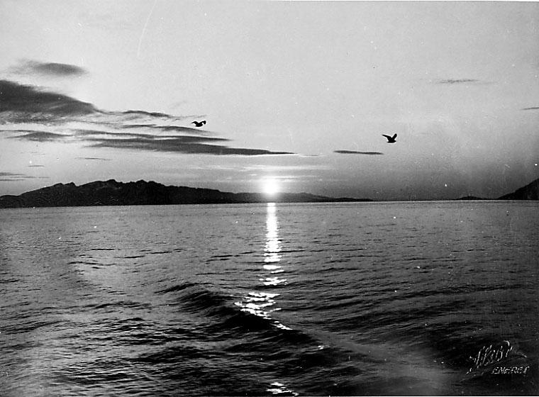 Kystlandskap med ant. midnattsol i horisonten bak. Ant. tatt fra båt.