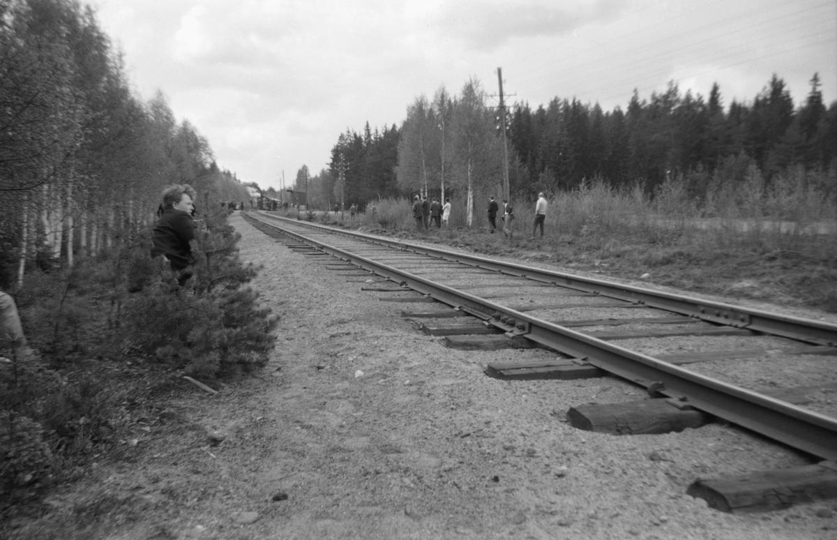 Norske og svenske jernbaneentusiaster venter på fotokjøring med Svenska Järnvägsklubbens veterantog på Solørbanen, trukket av damplok 26c 411.