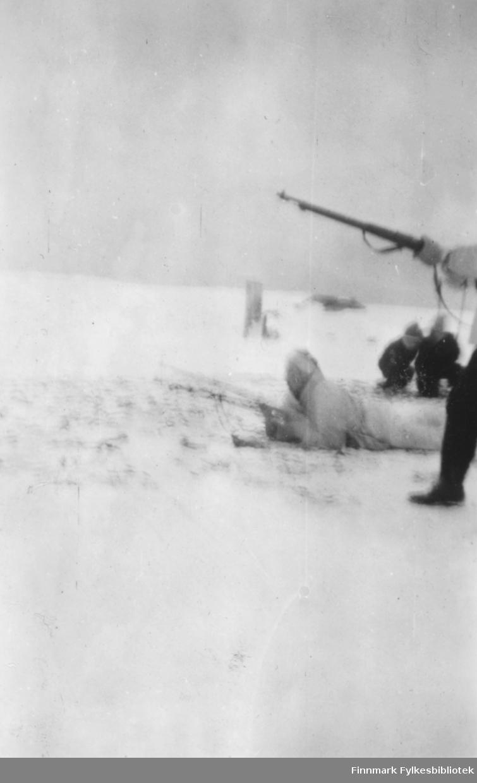 Skiskytterstevne i Vadsø-området, 1950-tallet