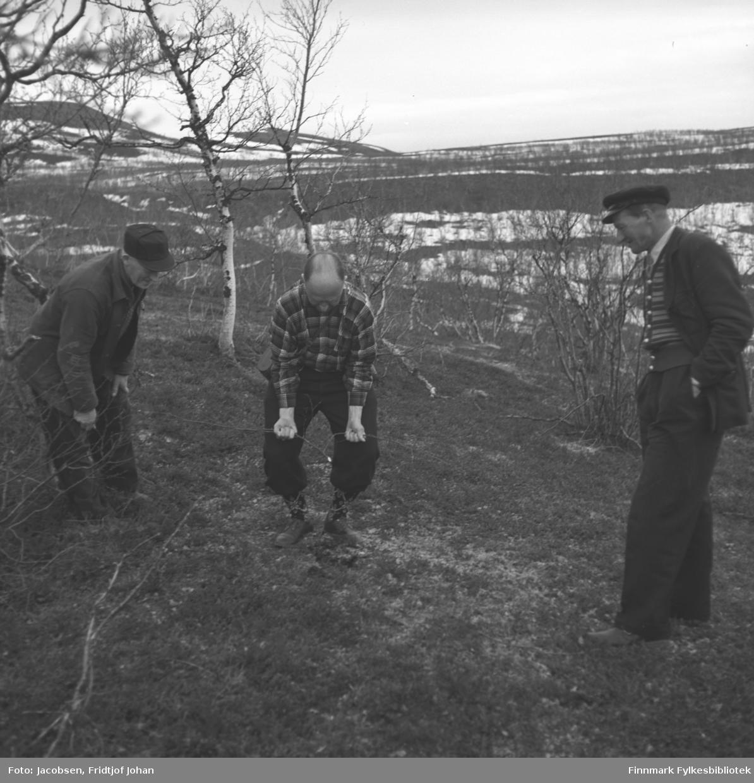 Tre menn ute i terrenget. I midten står Alf Henriksen iført rutet skjorte og mørk bukse. Han har en ønskekvist i hendene, sansynligvis på leting etter vann. De to mennene ved siden av han har mørke klær og mørke skyggeluer på seg. Kan se ut som Per Svendsen til høyre. En del små løvtrær står på området som har gress- mose- og lyngdekke. Flere snøflekker ligger bak dem og videre bortover, noe som tyder på at bildet er tatt om våren. Stedet er sannsynligvis Repparfjord i Kvalsund kommune.