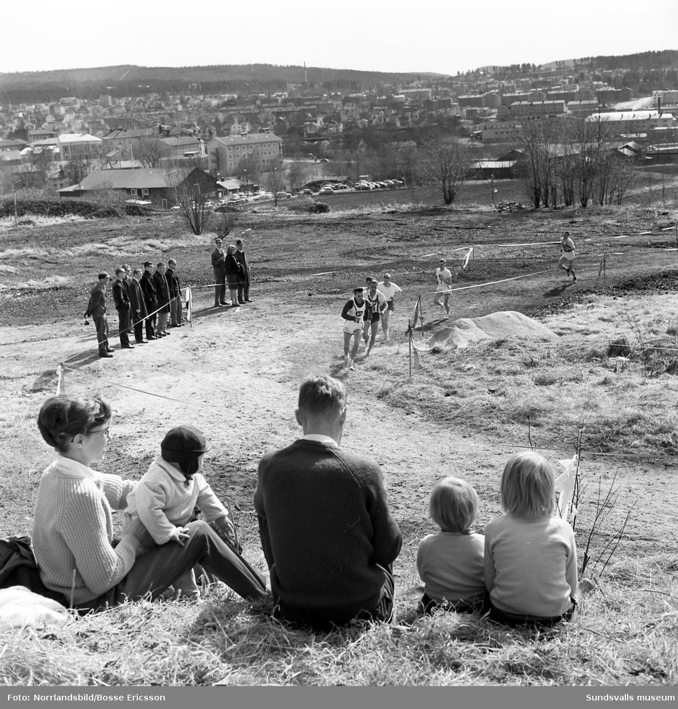En serie bilder från terräng-SM 1964 som avgörs i Sundsvall med start och mål vid Västhagens idrottsplats.