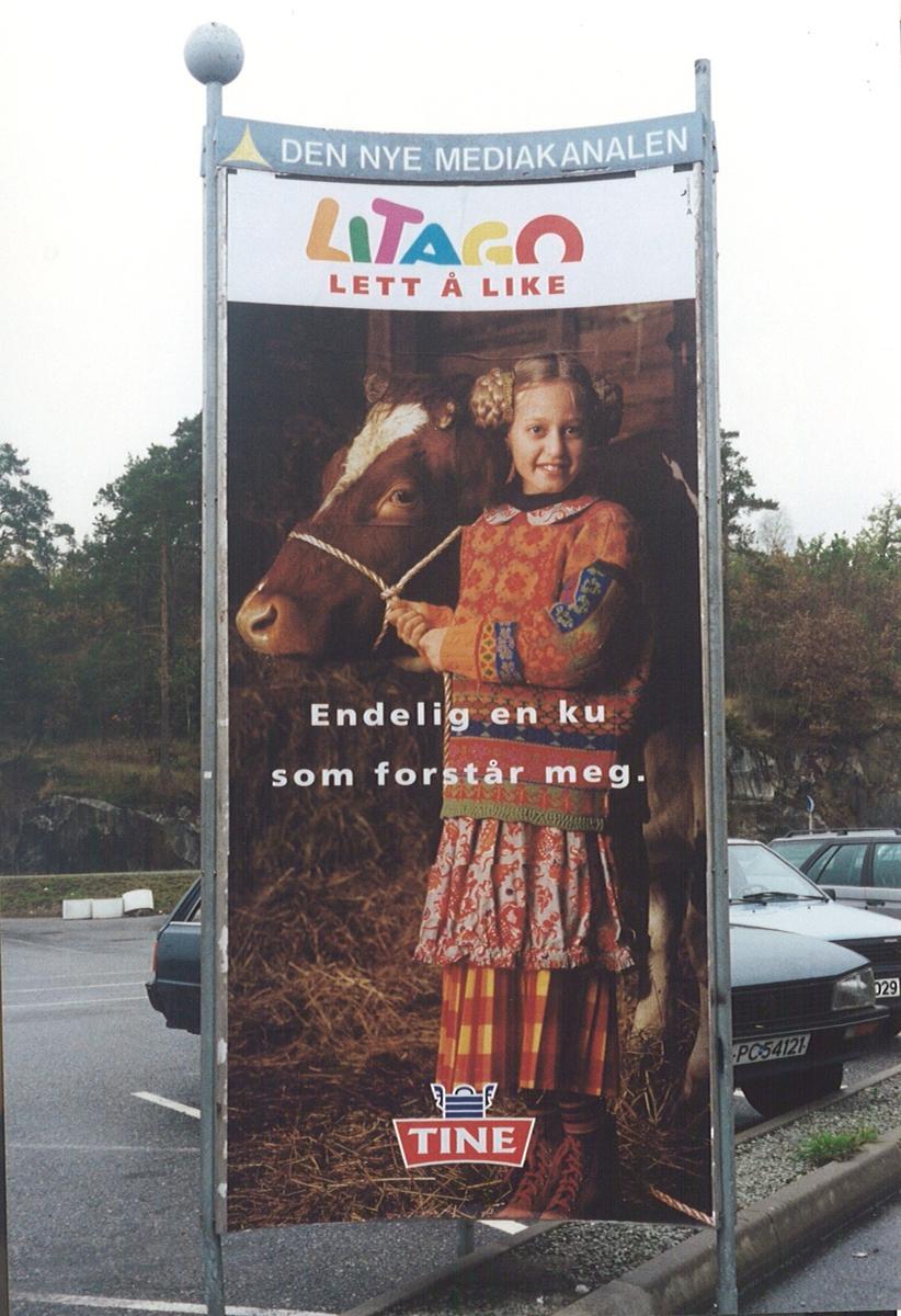 Board, Tine, jente med ku, på parkeringsplassen ved ICA i Grimstad.