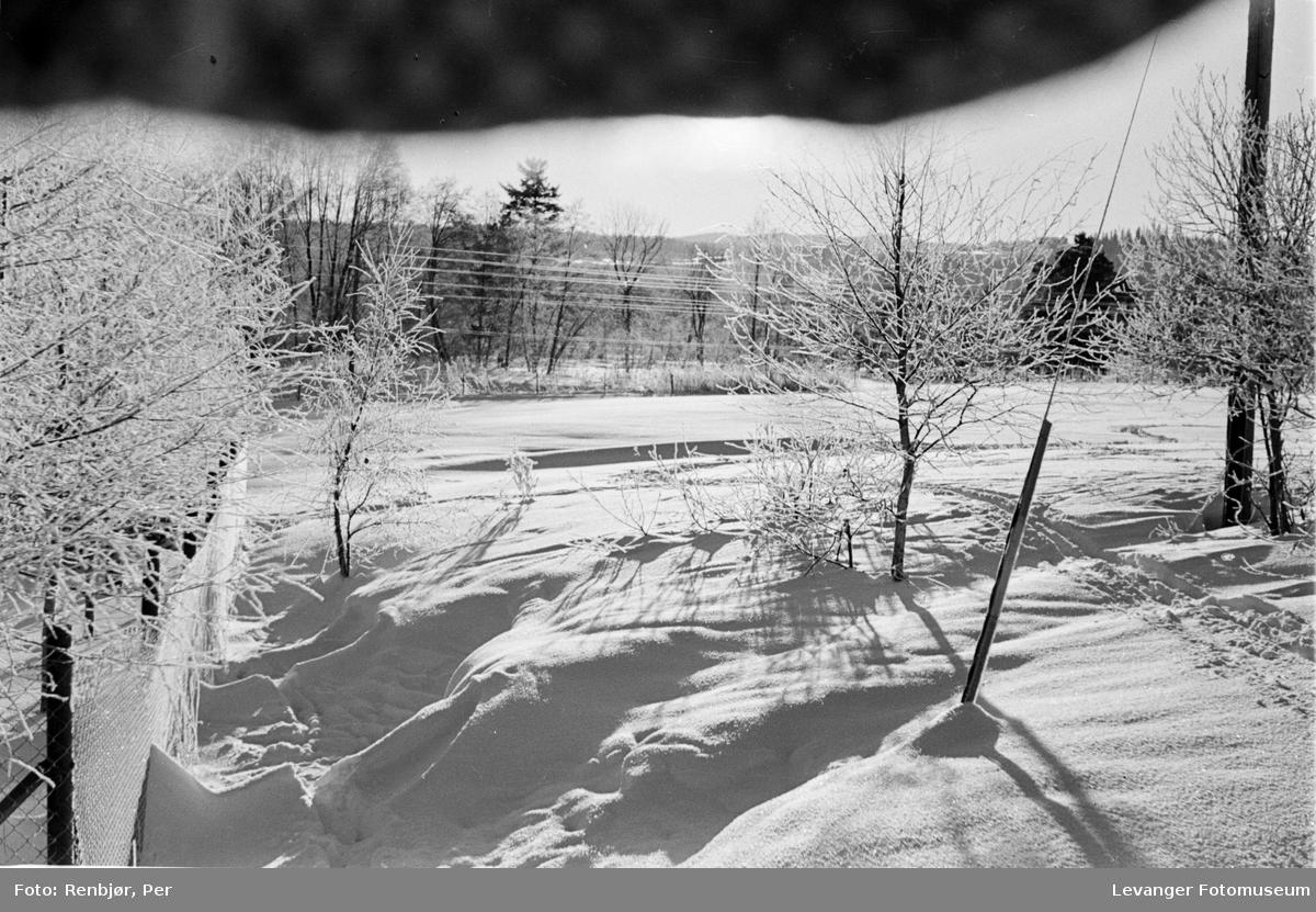 Vinterbilder fra Levanger, mars 1941.