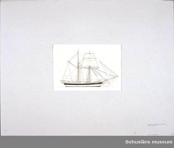 Montering/ram: Passepartout av tunn grå kartong; 55 x 66 cm, Bramriggade skonerten Hansina, byggd 1850 i Schleswig, 94 bruttoton. Övrig historik se UM72.26.001.