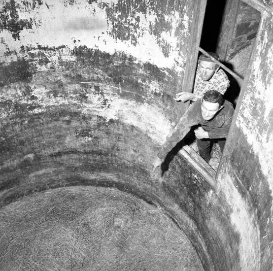 """Enligt notering: """"Flicka skadad till döds i silos d 30/7 -58""""."""