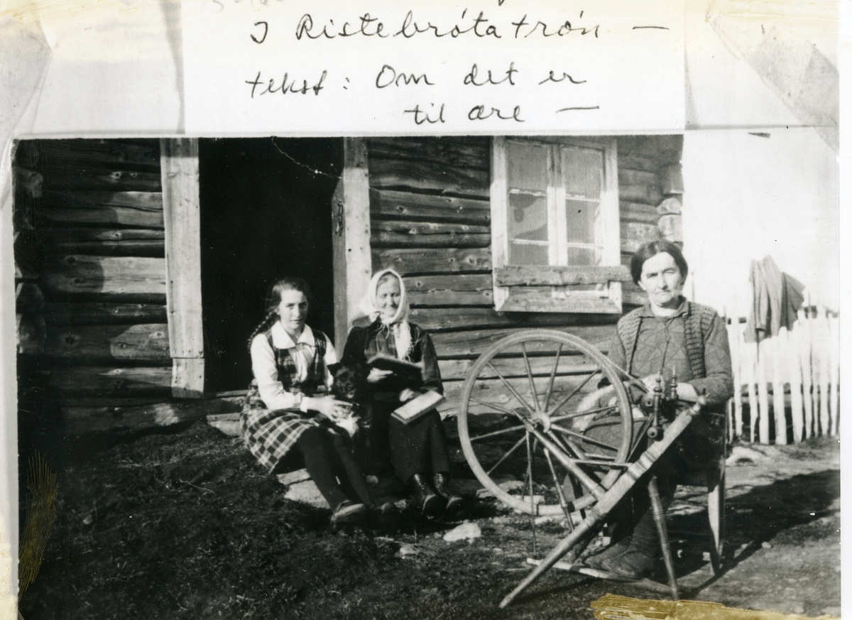 Tre kvinner framfor døra på stølssæl, arbeidande med spinning og karding. Ein hund sit mellom dei to kvinnene på troppa