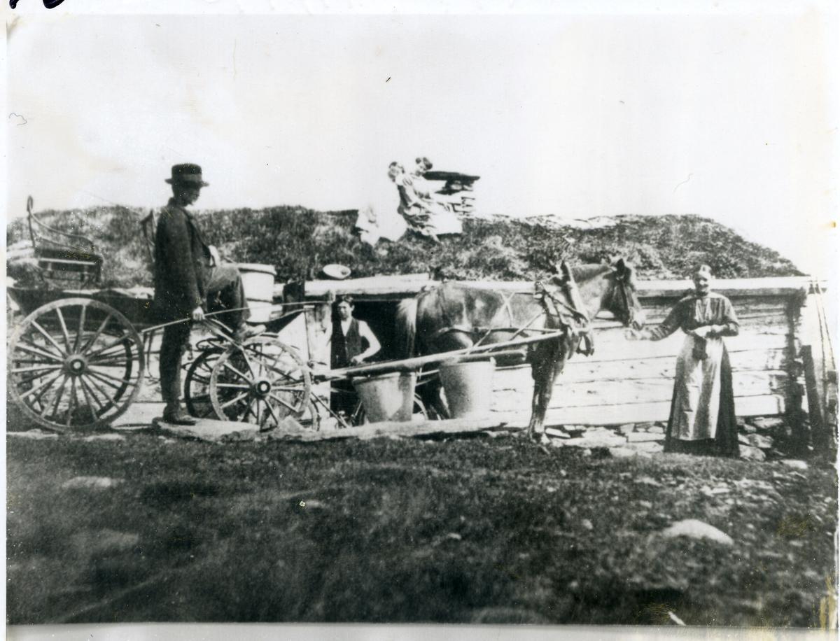 Hest og kjerre foran stølssel. Kvinne holder hesten, mann står ved kjerra. To jenter på torvtaket.