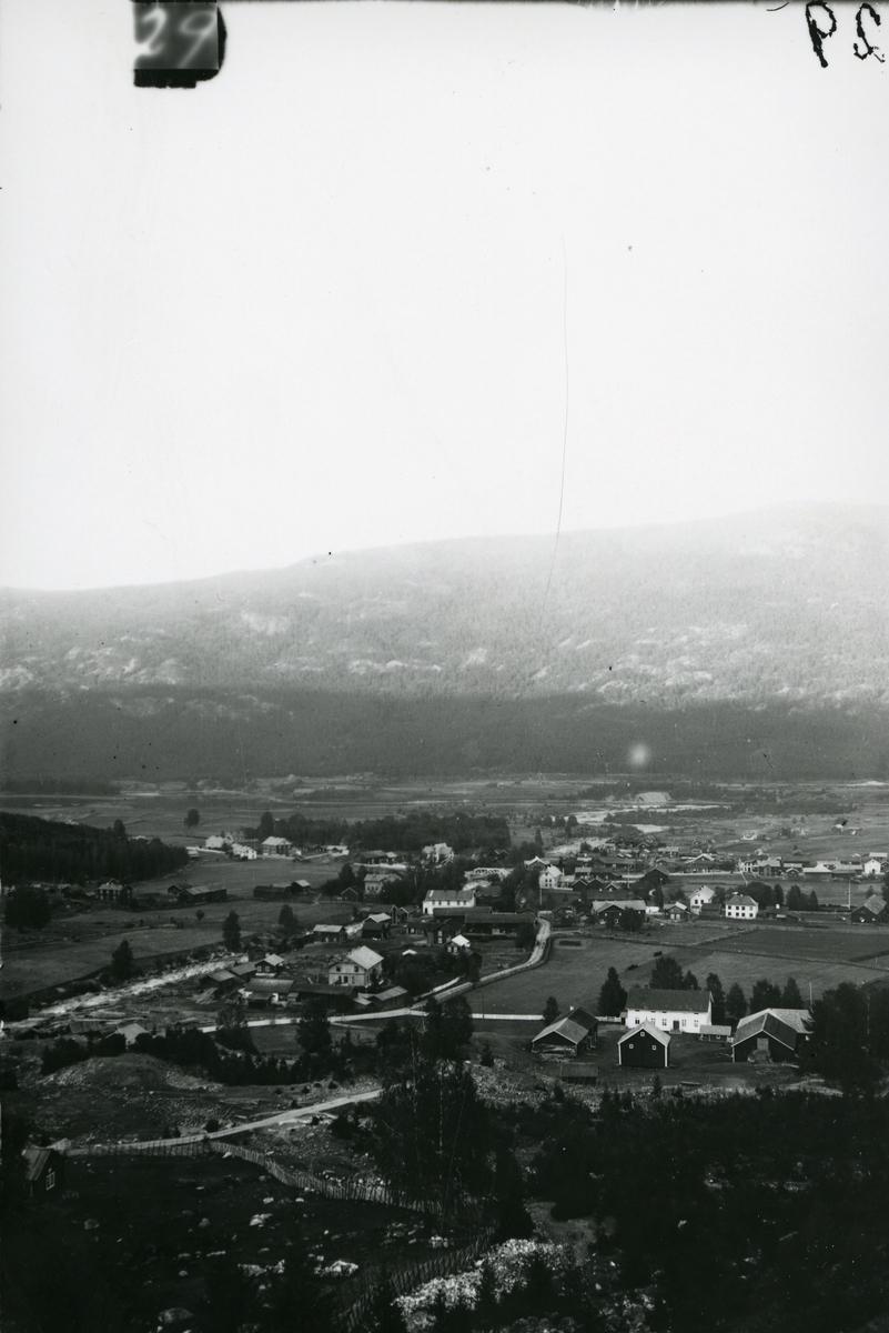 Oversiktsbilde over Nes i Hallingdal.