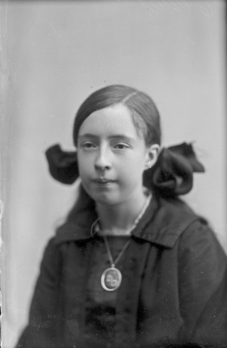 Portrett bestilt av Borghild Strøm.
