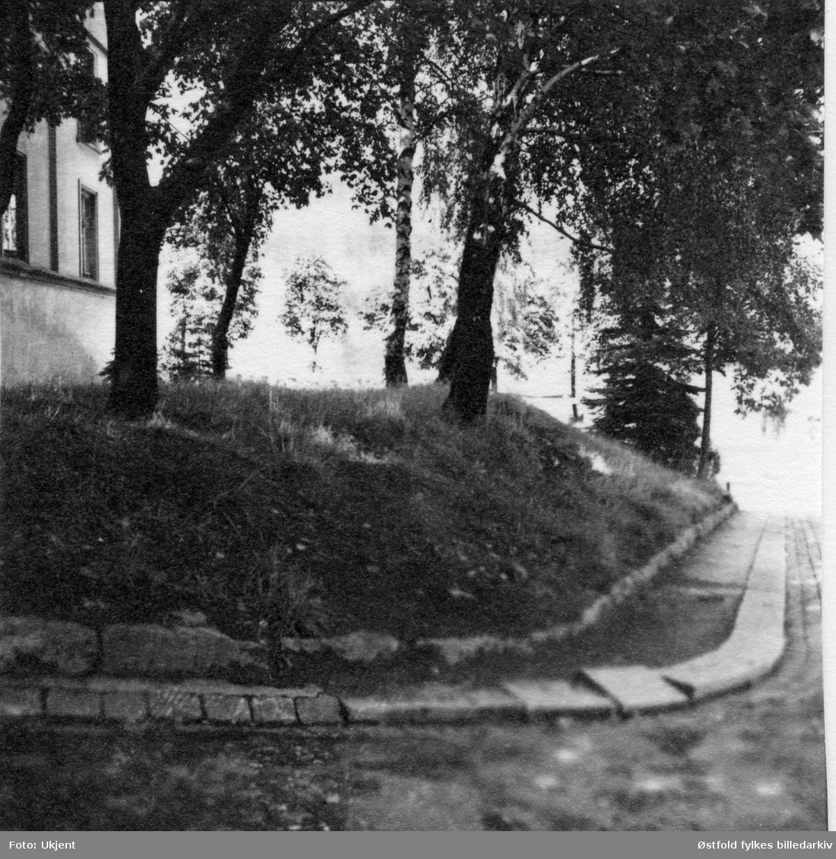Rester av Olavsvollen i hagen til Borregaardsveien (ved St. Mariegate), Sarpsborg 1950.