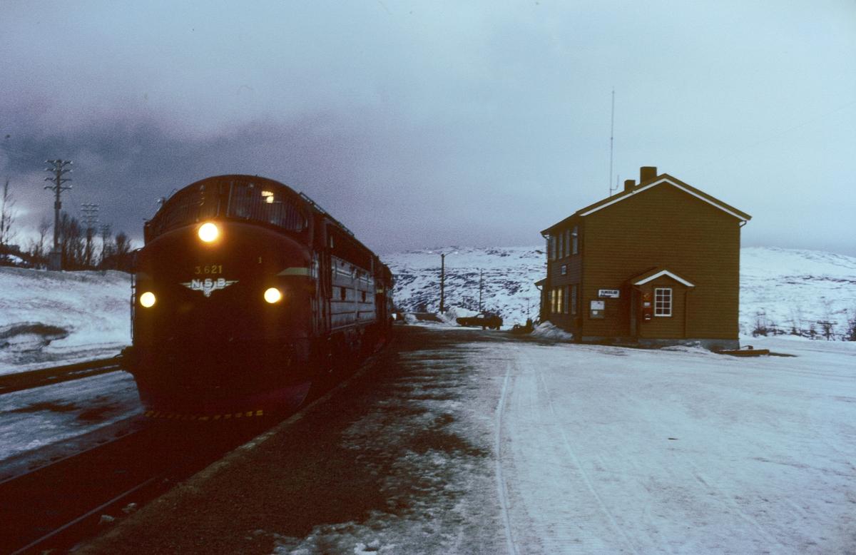NSB godstog 5794 i Lønsdal stasjon. Det var vanlig å komme litt før tiden hit, og togekspeditøren ventet med nykokt kaffe. Di 3 621.