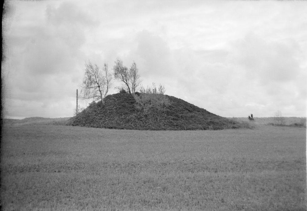 Gravhög på Hols gärde (Prästgården) cirka 60 m i omkrets.