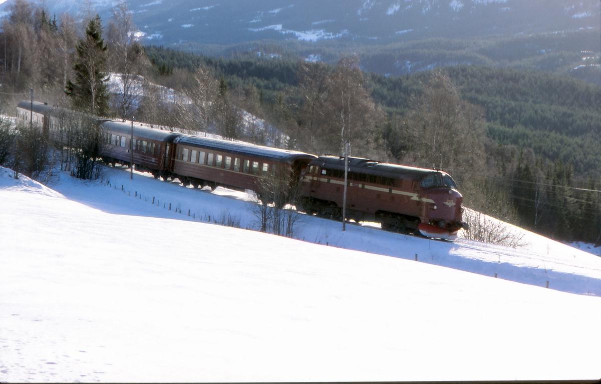 Persontog 281 (Oslo S - Fagernes) i nærheten av Bjørgo. Dieselelektrisk lokomotiv Di 3 633 og personvogner type 3.