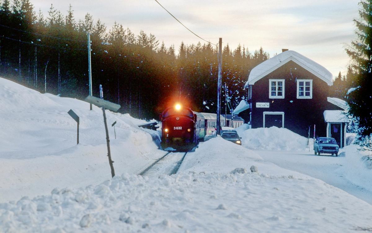 Persontog 284 (Fagernes - Oslo S) ankommer Trevatn en snørik vinterdag.