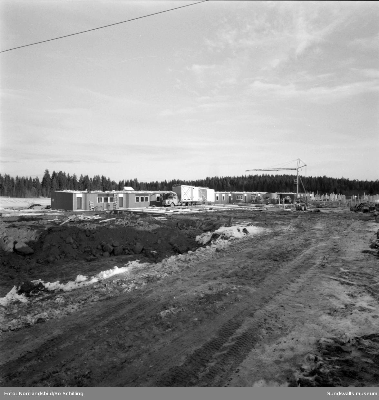 En stor serie bilder från bygget av Korstaskolan med grundarbete och montering av färdiga hussektioner.