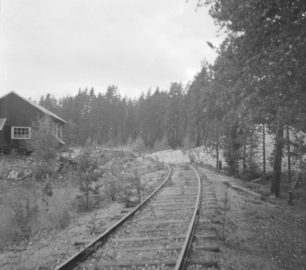 """Sidespor som en gang i tiden gikk til Ramfoss tresliperi på Kløftefoss. I dag omtales det gjerne bare som """"Sagbrukssporet"""". I dag benevnes det spor 4 på Kløftefoss stasjon. Det er en del av dette sidesporet som ble spikret om til 1067 mm sporvidde for å ta i mot materiell fra Sulitjelmabanen."""