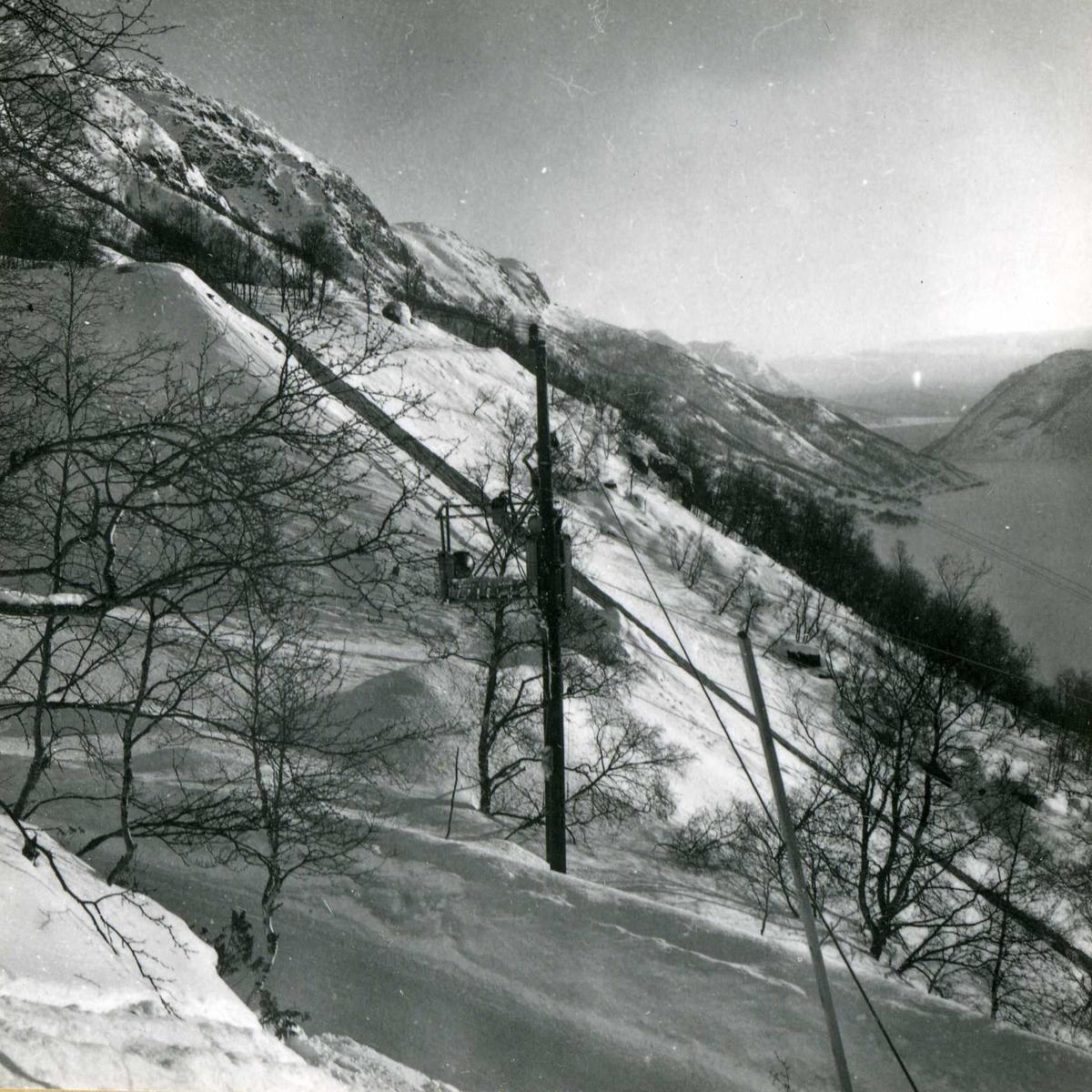 Kraftområdet. Fellesanlegg. (153)