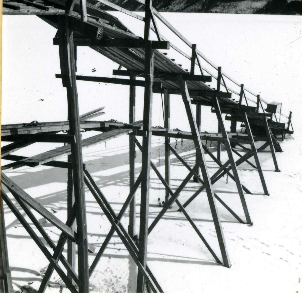 Eiendoms og byggningsforvaltning  (54)