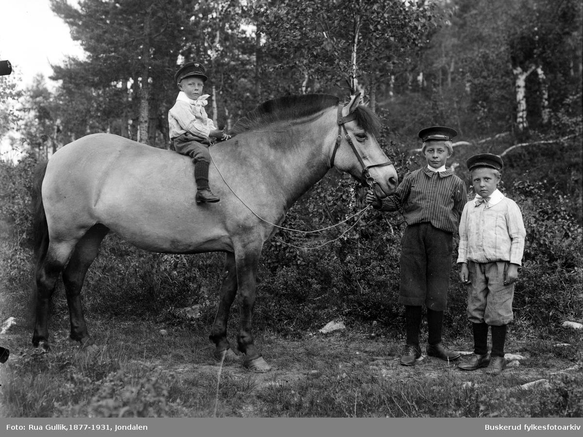 Tra barn og en hest På hesten Jon K Rønningsdalen (1893....) Ola K Rønningsdalen (Stordalen) (1886.....) og Anders K Rønningsdalen (1888....) Jondalen 1898