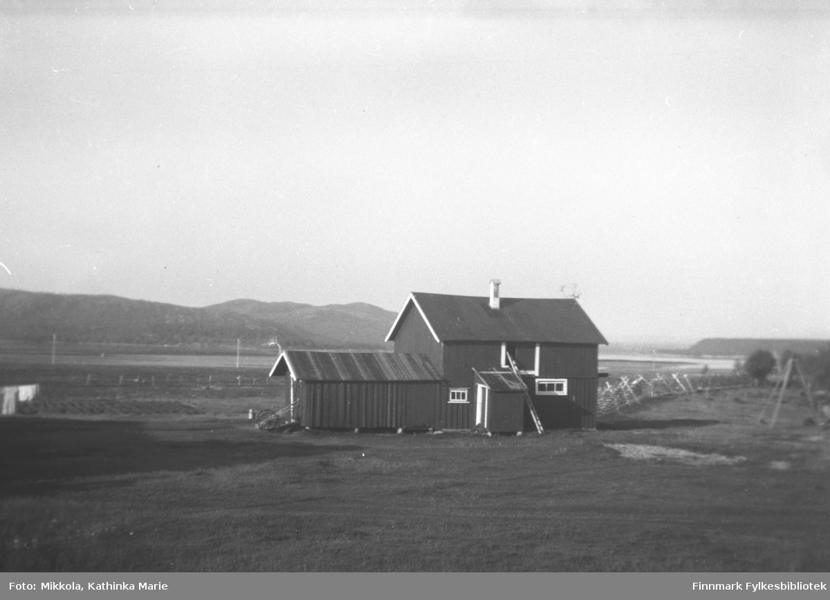 Fjøset på gården Mikkelsnes. Til venstre i bildet ser vi potetland og klesvask i vinden. Til høyre er det satt opp snøgjerder