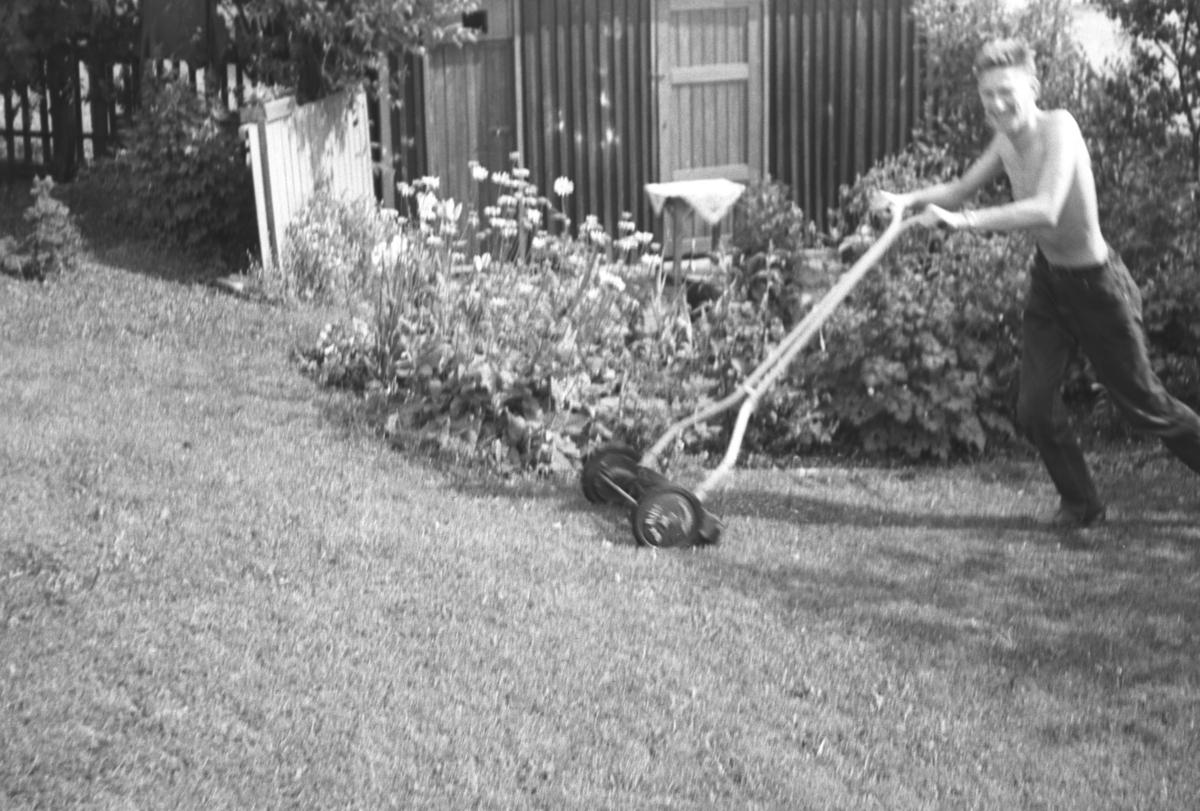 Tor Hauge klipper plenen i familiens hage i Nyborgveien i Vadsø.