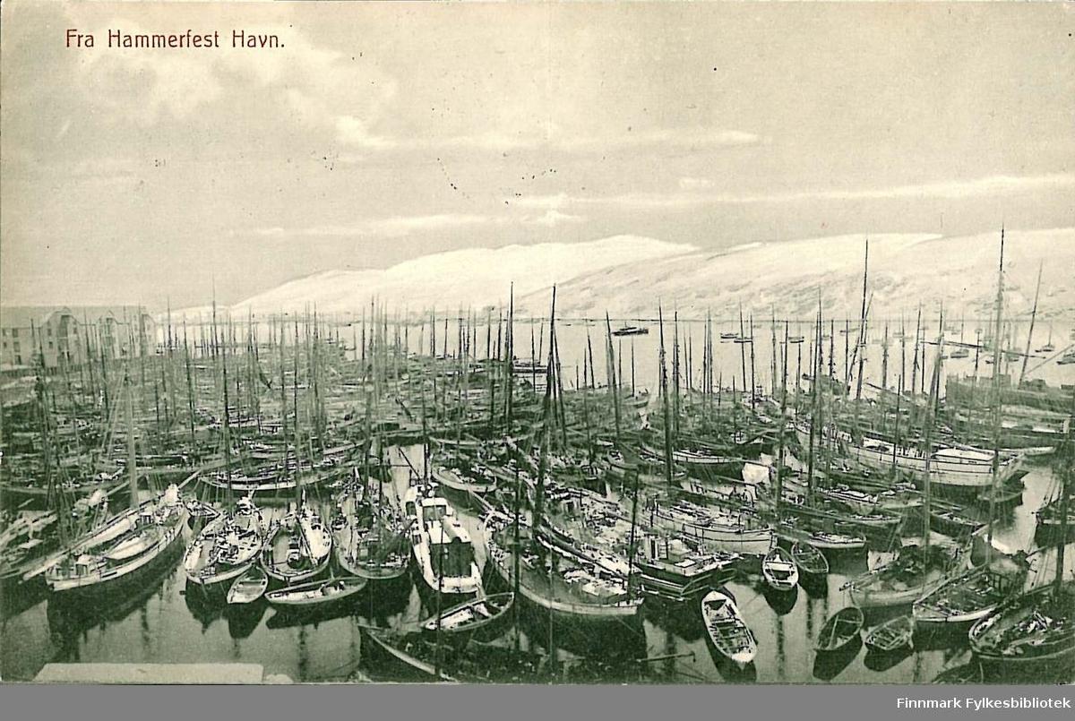 Postkort med motiv fra Hammerfest havn. Kortet er en jule- og nyttårshilsen til Arthur og Kirsten Buck på Hasvik. Kortet er sendt fra Hammerfest i 1910.