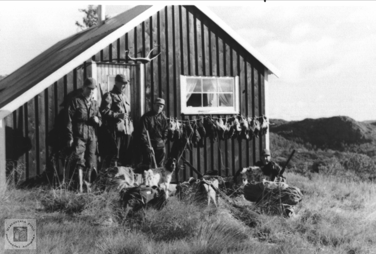 Rypejakt i Snøheia, Reiersdal i Åseral.