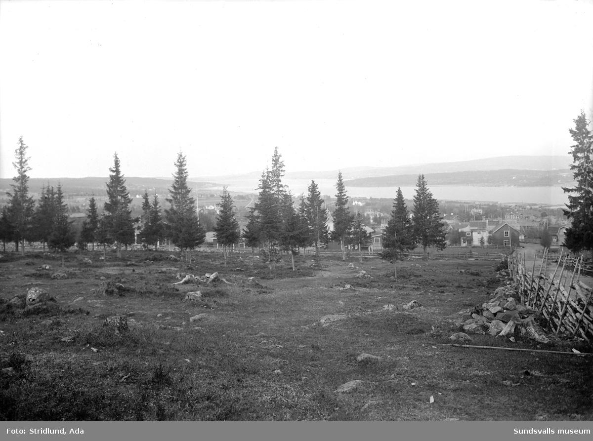 """Vibacksvägen, (Vibacken eller """"Almers backe"""") sedd uppifrån. Till höger trevägskorsningen, numera fyrvägs med Moränvägen."""