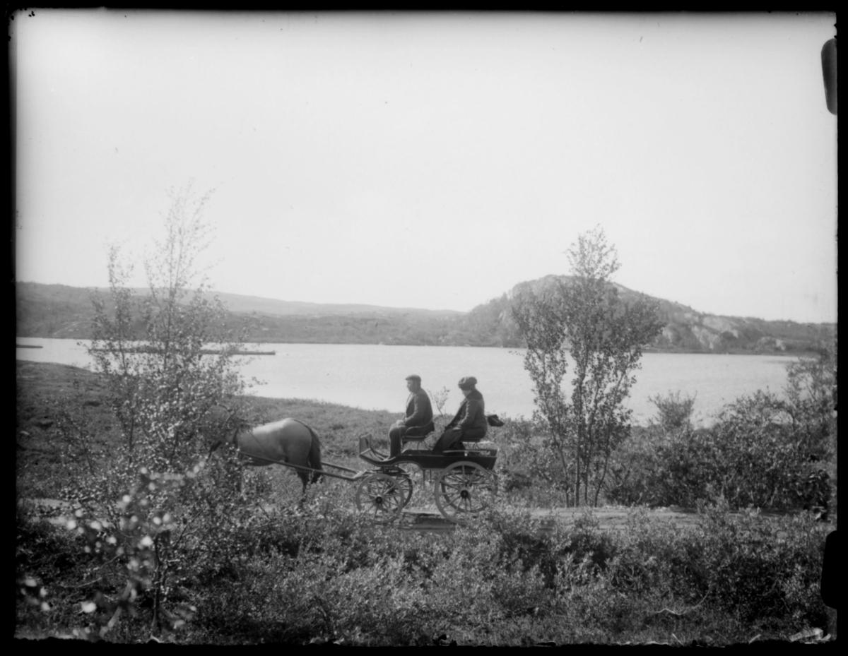 Hest og vogn på vei i Sør-Varanger.