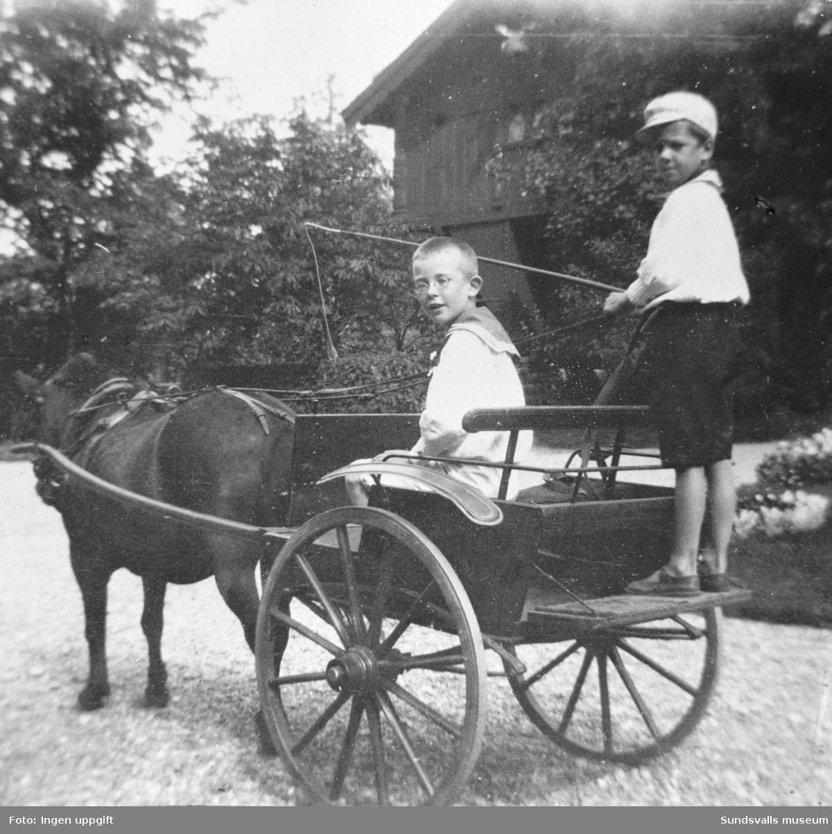 Gustaf Braathen (stående) och Andreas Bugge med häst och vagn vid Hofvids herrgård.