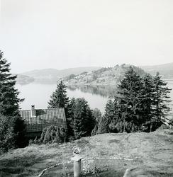 Sommaren 1959. Wetterlunds hus, till vänster soluret. Detta