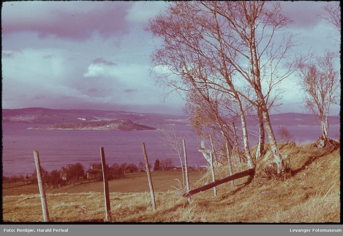 Utsikt i Skogn.