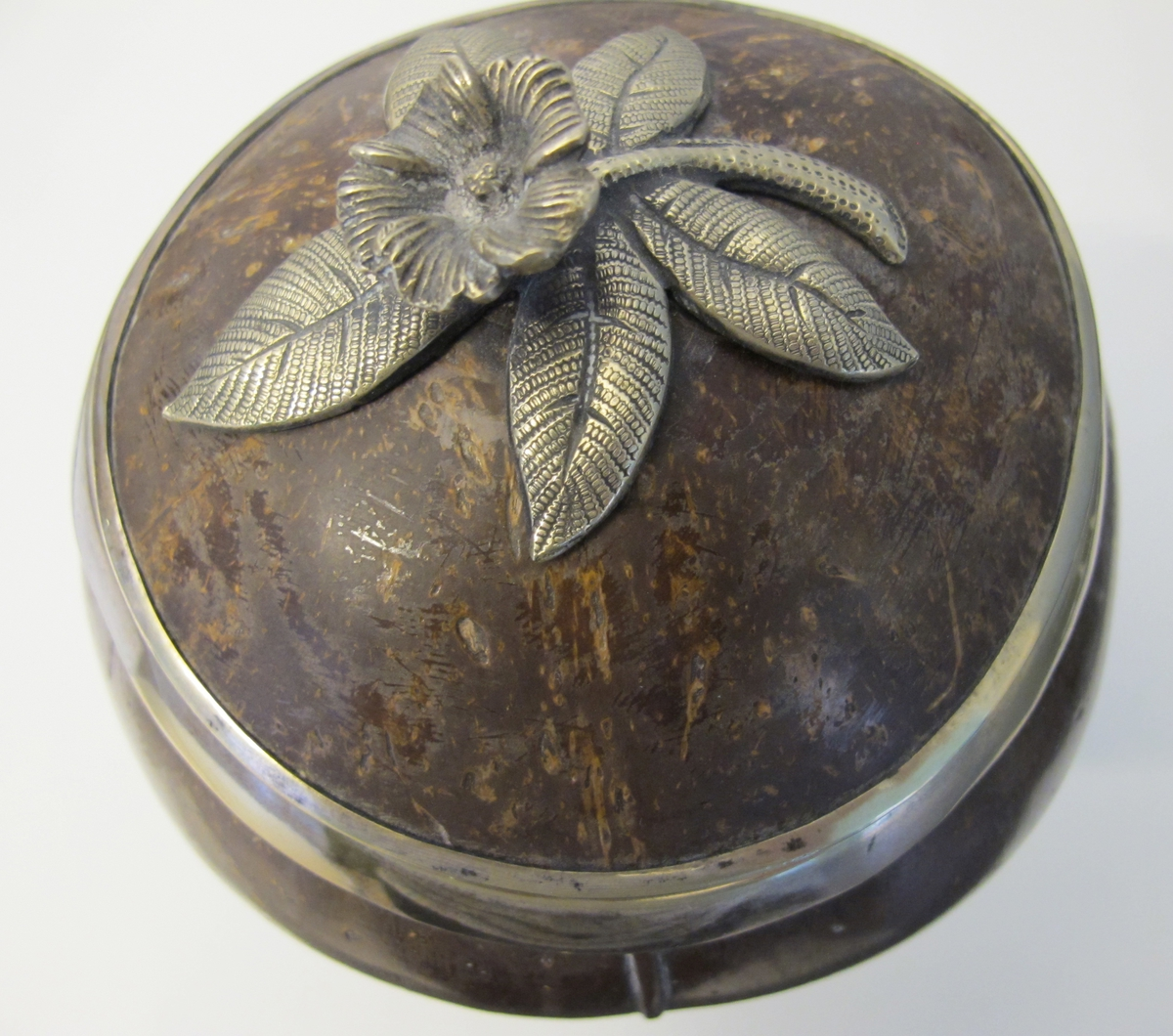 Kokosnöt med silverdetaljer