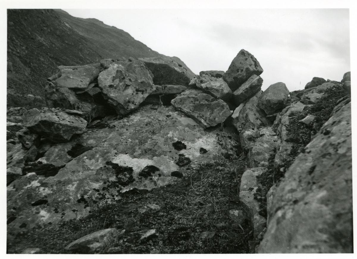 Bildet viser et såkalt bøgahi som var et skjul for reinjegere.