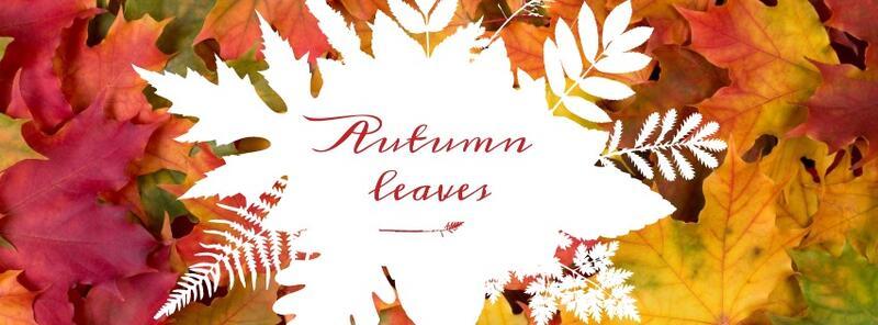 Autumn Leaves er tittelen på kammerkoret Vivas høstkonsert. (Foto/Photo)